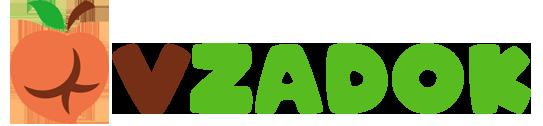vzadok.com